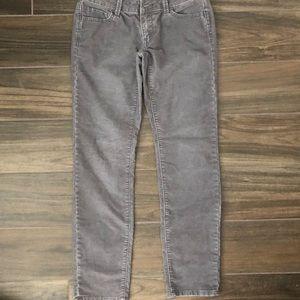LOFT Women's Corduroy Gray Modern Slim Pants 2P